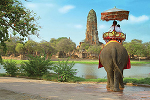 thailande ayutaya les touristes sur un tour delephant  fo