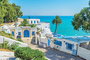 tunisie sidi bou said  it