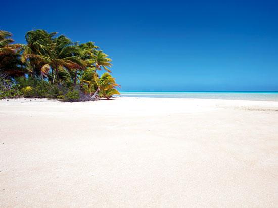 (Image) NT antilles martinique plage  istock
