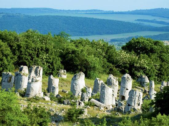 (Image) bulgarie pobiti kamani  istock