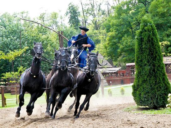 (Image) hongrie cavalier magyar dans la puszta