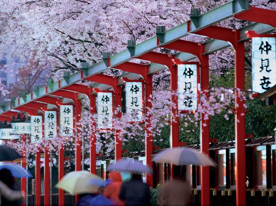 Circuit Japon Le Japon Pays Du Soleil Levant 11 Jours