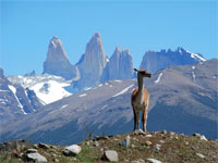 Le Chili, l'Argentine et l'Uruguay