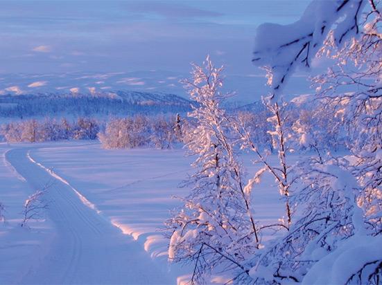 (Image) norvege beitostolen