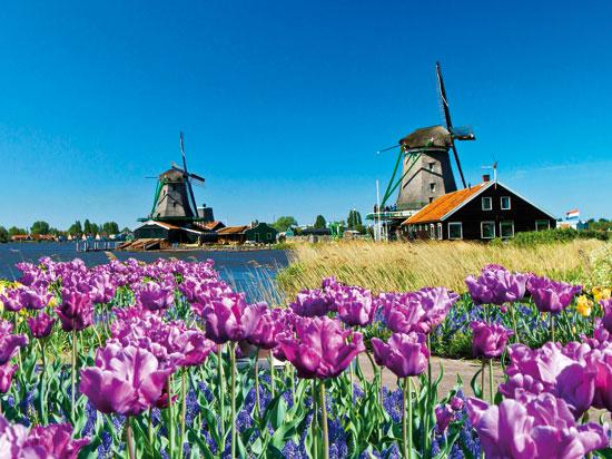 (Image) pays bas hollande venlo la floriade  fotolia